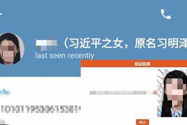 习近平女儿及姐夫个资泄露 24网民被判刑