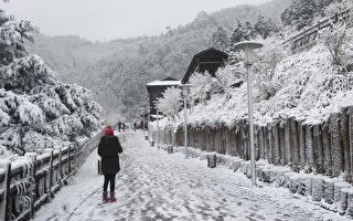全台下雪地图一次掌握 超美银白世界