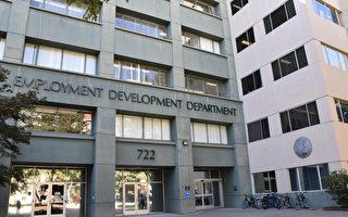 EDD擴大失業金欺詐調查 部分被暫停發放