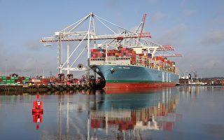 全球海運需求增 費率去年增加50%