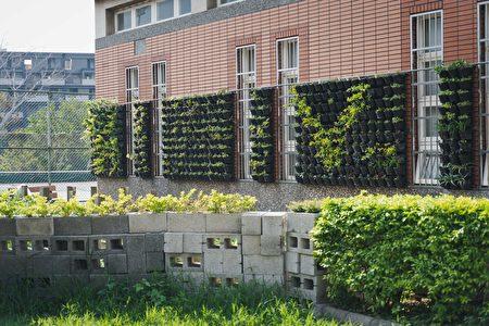 建築綠化好處多多,若透過建置綠屋頂、綠牆等,可提供一層保護,達到隔熱降溫效果,又可減少能源消耗並延長建築壽命。