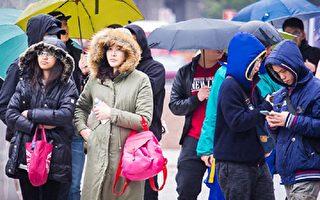 本周先湿后冷 气象局:周末低温12度