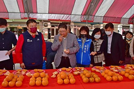 新竹县长杨文科试吃参赛桶柑,赞不绝口。