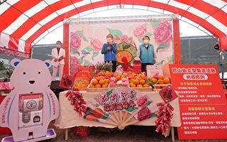竹县唯一的展售活动 宝山乡茶花柑橘登场