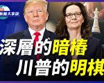 【新闻大家谈】中情局刻意淡化中共干预大选?