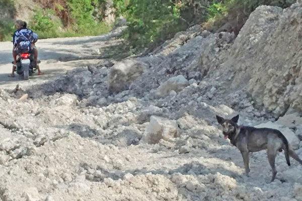 狗狗狂吠引關注 菲律賓男成功救起一名棄嬰