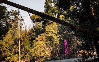 旧金山湾区飓风天气 周二引发停电和多地火灾