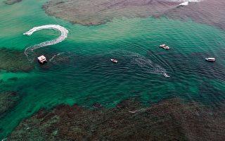 偵察澳鄰國海域 中共水下滑翔機被漁民捕獲