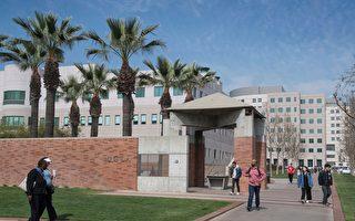 申请入学UCLA人数大增 再次成全美最高