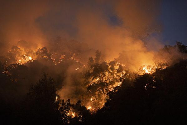 圣安娜风促千橡市爆野火 疏散居民已返家