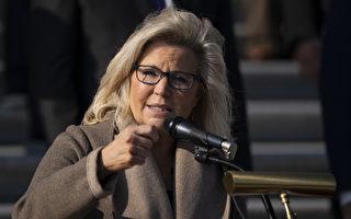 怀俄明碳县共和党:谴责国会议员莉兹‧切尼