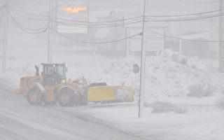 多伦多市府改进除雪服务 但有些情况不提供服务