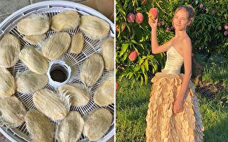 澳洲女孩用芒果核做長裙 呼籲人們減少浪費