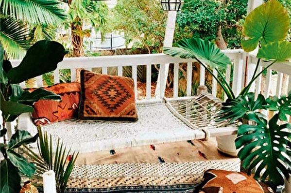 陽台輕改造 好看不亂的植物布置技巧