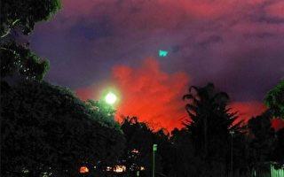阿德萊德山火受控 撤離居民返回家園