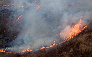 研究:山火的降温效应大于气候模型预测