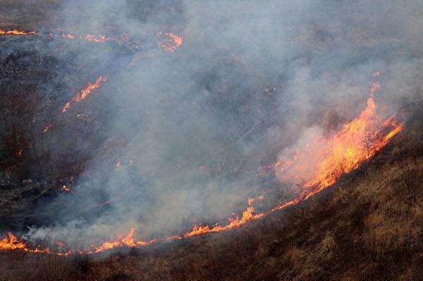 研究:山火的降溫效應大於氣候模型預測
