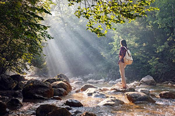 森林浴有抗癌、紓壓、提升免疫力等好處。(Shutterstock)