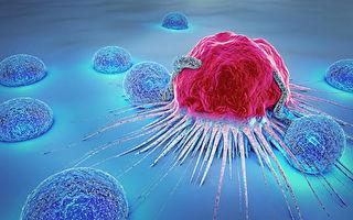 新方法可控制一線免疫細胞排異反應