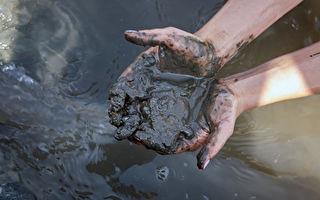 新细菌用污泥废水制造可降解塑料