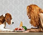 改善毛小孩肝病、肥胖問題 親手做鮮食食譜
