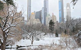 纽约市今起连续10天降温 下周末迎极寒天气