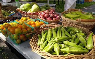 皇后区农场博物馆将种新品种蔬果