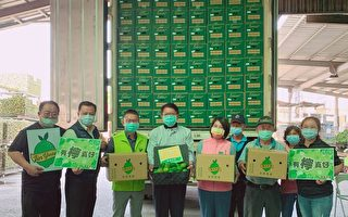 屏东柠檬鲜果外销中国上海  2日封柜启航