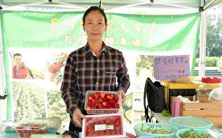 逛黎明農夫市集 找尋有機美味蔬果