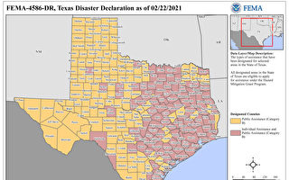 FEMA聯邦緊急援助申請說明