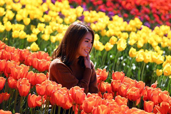 澳大利亚城市墨尔本荣登2021年Instagram评选全球春季最美城市排行榜。图为墨尔本泰斯勒郁金香节(Tesselaar Tulip Festival)。 (WILLIAM WEST/AFP via Getty Images)