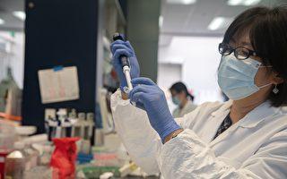 研究:加州变种病毒恐更具传染性和致命性