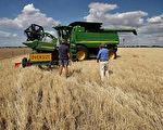 中共报复性关税影响有限 澳洲大麦出口增