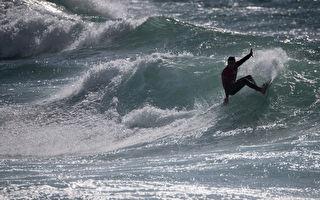 世界衝浪聯盟賽事今年將移師新州和西澳
