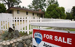 洛县1月房屋成交量年同比增14%