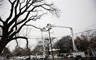 学者:德州大停电显示可再生能源的脆弱性