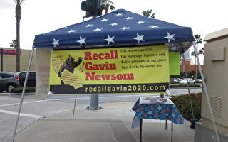 加州共和黨主席獲連任:紐森及佩洛西需下台