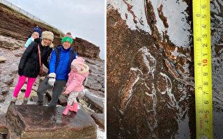 重要发现 英4岁童发现2.2亿年前恐龙足迹