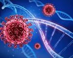 【疫情2.9】英国又现两款中共病毒新变种