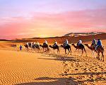 撒哈拉沙漠還會再次變成綠洲嗎?