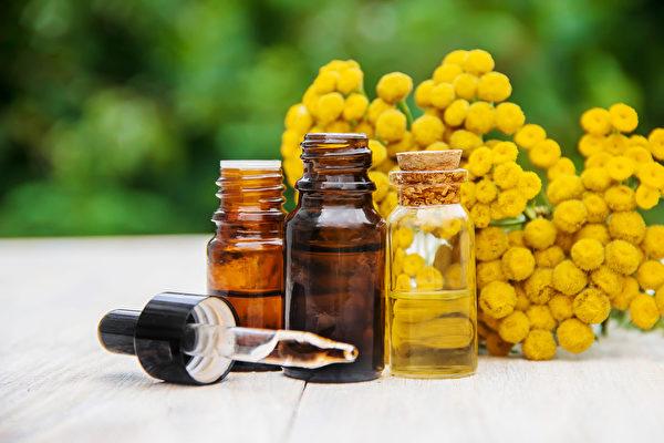 菊花精油可瀉肝火、柔肝清熱、明目、改善飛蚊症。(Shutterstock)