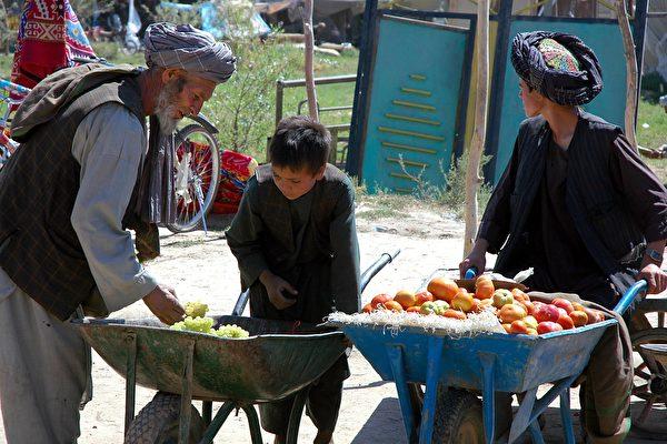 阿富汗储存葡萄的传统方法 可保持新鲜半年
