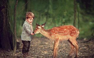 4歲童帶小鹿回家做客 純真互動感動網友