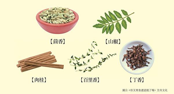 養腸胃食物九:用作腸胃藥的辛香料、藥草。(方舟文化提供)