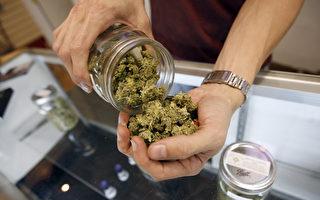 紐約反大麻聯盟阻止合法化進入州預算
