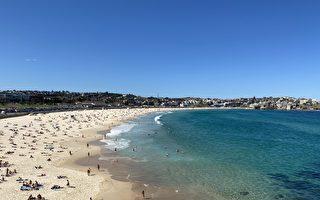 澳華人兩千萬買下海景公寓 破悉尼拍賣紀錄