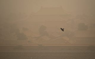 组图:沙尘暴肆虐多省 京城笼罩在黄色尘土中