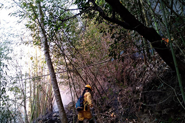 阿里山森林大火延烧逾30小时 终获控制