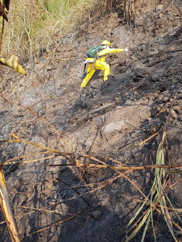 台湾阿里山火灾延烧逾30小时获控制
