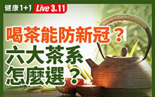 【重播】喝茶助防疫嗎?6大茶系怎麼選